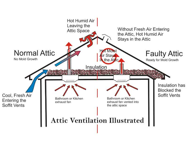 Five Reasons Why Roof Ventilation Is Essential For Your Homes Health 1