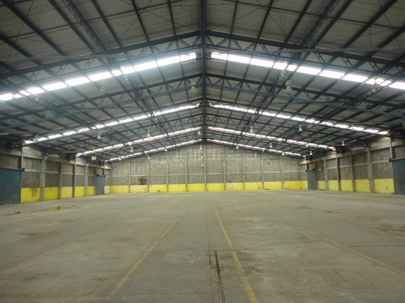 Fibreglass Roofing Panels (FRP) for Industrial and Commercial